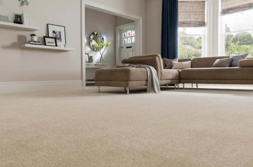 carpets-for-living-room-carpet-rumboalmar-com